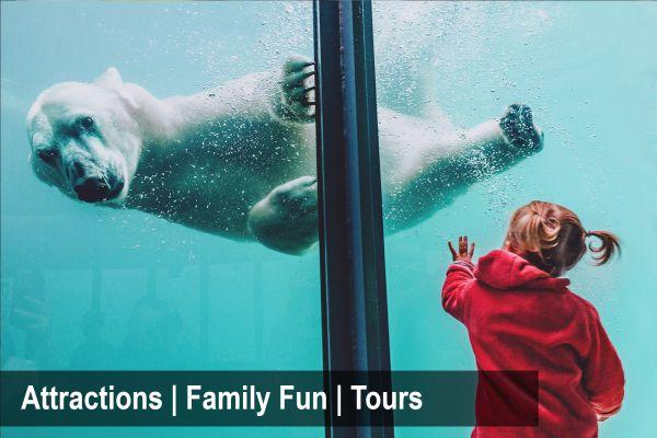 attractions-family-fun-toursCBFE31DC-5359-2A9D-4792-4340F2951485.jpg